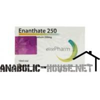 ELITE PHARMA ENANTHATE 250 10ML - 250MG/ML