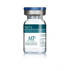 MAGNUS PHARMACEUTICAL TEST E 10ML - 250MG/ML